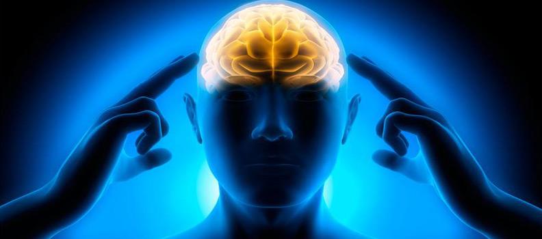 KLEINER IQ-TEST…